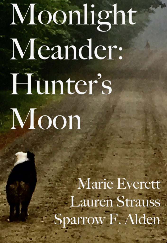 The book cover shows a Very Good Dog staring with alertness down the dirt road at a whitetail buck in the mist.  There are authors' names, but they are not as important as the Very Good Dog who watched the big buck with quiet awe and excitement.  After he bounded away into the green, deciduous woods, she told her Mommy all about it (the Mommy who snapped the photo).